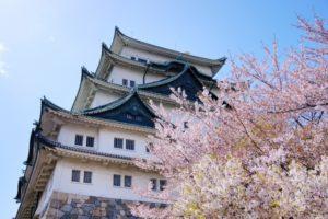 名古屋城桜まつり中止