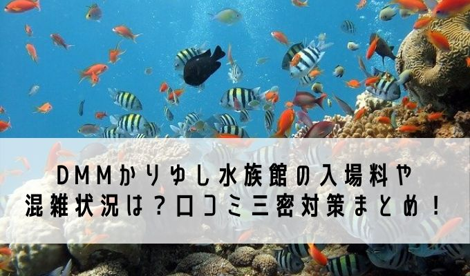 DMMかりゆし水族館の入場料や混雑状況は?口コミ三密対策まとめ!